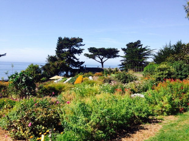 The garden at Esalen.jpg