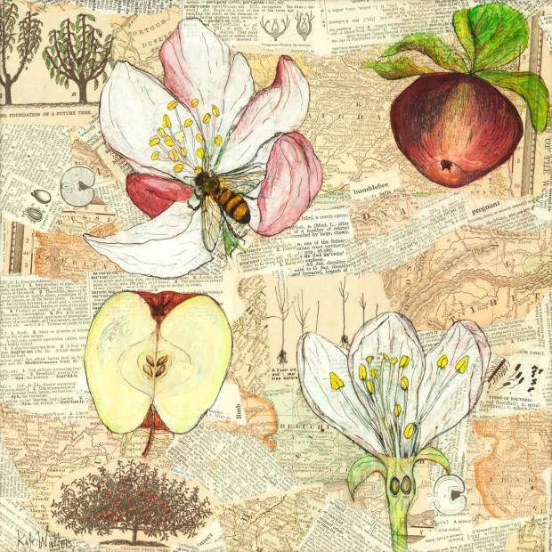 Ode to Apple Pollination paper collage by the author on display at the State Bar Cross-Pollination show through May